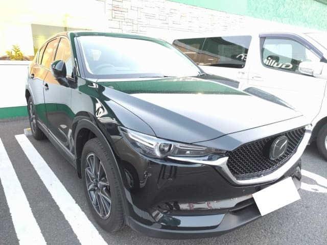 Thumbnail.car image 002756249 2020 02 04t021736z